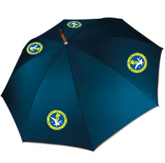 Spirit Of Youth Umbrella